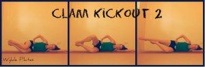 Clam Kickout 2: gluteus medius