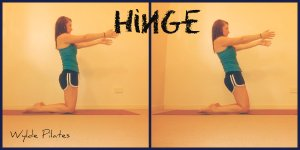 Hinge: abs, quads, butt