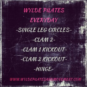 Wylde Pilates Everyday #8
