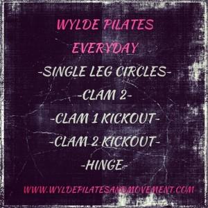 Wylde Pilates Everyday #8