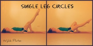 Single Leg Circles: warm up t-zone, abs, hip flexors and adductors