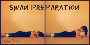 Swan Preparation